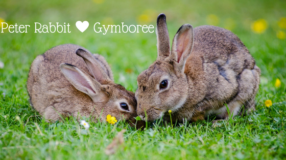 peter-rabbit-gymboree-1