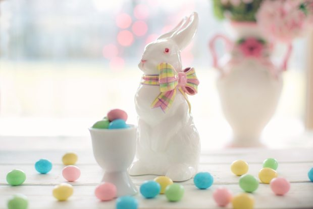 bunny-candy-celebration-373331